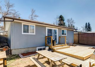 Photo 2: 3042 30A Street SE in Calgary: Dover Detached for sale : MLS®# A1097578