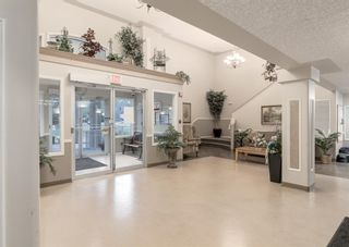 Photo 21: 3229 3229 MILLRISE Point SW in Calgary: Millrise Apartment for sale : MLS®# A1116138