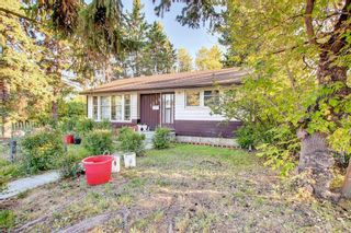 Photo 3: 1235 20 Avenue NW in Calgary: Capitol Hill Detached for sale : MLS®# A1146837