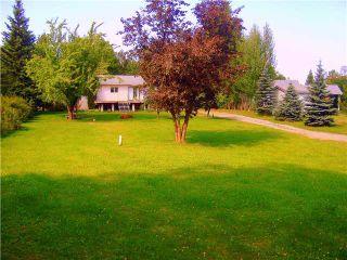 "Photo 9: 2987 CHARELLA Drive in Prince George: Charella/Starlane House for sale in ""CHARELLA/STARLANE"" (PG City South (Zone 74))  : MLS®# N212303"
