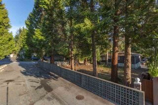 """Photo 12: 5181 GEORGIA Street in Burnaby: Capitol Hill BN House for sale in """"CAPITAL HILL"""" (Burnaby North)  : MLS®# R2489941"""