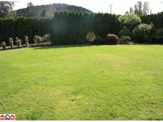 Photo 3: 35339 MCKEE Road in Abbotsford: Abbotsford East House for sale : MLS®# F1105297