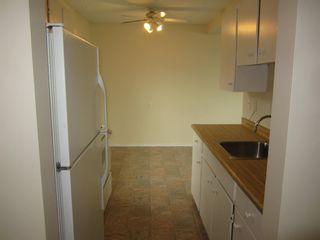 Photo 6: 8349 29 Avenue in Edmonton: Zone 29 Townhouse for sale : MLS®# E4247069