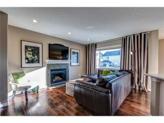 Photo 4: 41 ROYAL BIRCH Crescent NW in Calgary: Royal Oak House for sale : MLS®# C4041001