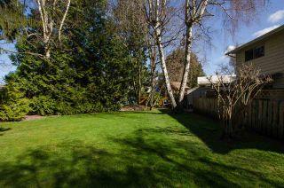 Photo 18: 4551 47 Street in Delta: Ladner Elementary House for sale (Ladner)  : MLS®# R2443367