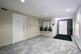 Photo 30: 1302 279 Copperpond Common SE in Calgary: Copperfield Apartment for sale : MLS®# A1146918