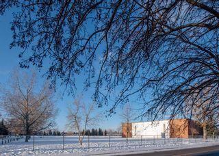 Photo 49: 2307 Lake Bonavista Drive SE in Calgary: Lake Bonavista Detached for sale : MLS®# A1065139