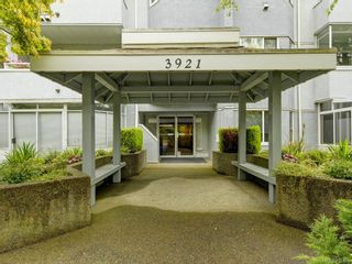 Photo 19: 206 3921 Shelbourne St in : SE Mt Tolmie Condo for sale (Saanich East)  : MLS®# 857180