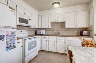 Photo 9: 6912 15 Avenue SE in Calgary: Applewood Park Detached for sale : MLS®# A1068725