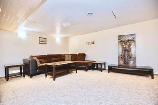 Photo 18: 56146 MEADOWVALE Road in Springfield Rm: RM of Springfield Residential for sale (R04)  : MLS®# 202107608