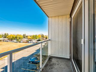 Photo 4: 412A 4455 Greenview Drive NE in Calgary: Greenview Apartment for sale : MLS®# A1101294