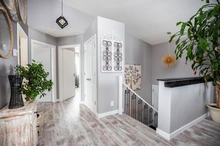 Photo 3: 19 Mireault Lane in Dufresne: R05 Residential for sale : MLS®# 202101105