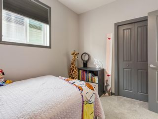Photo 29: 258 NOLAN HILL Drive NW in Calgary: Nolan Hill Detached for sale : MLS®# A1018537