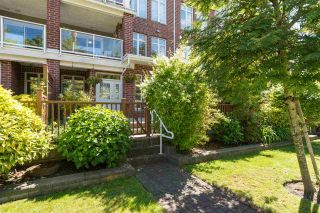 """Photo 1: 115 4280 MONCTON Street in Richmond: Steveston South Townhouse for sale in """"The Village at Imperial Landing"""" : MLS®# R2233408"""