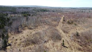 Photo 8: 8532 Trunk 4 Highway in Telford: 108-Rural Pictou County Vacant Land for sale (Northern Region)  : MLS®# 202108300