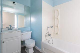 Photo 23:  in Edmonton: Zone 05 House for sale : MLS®# E4254439