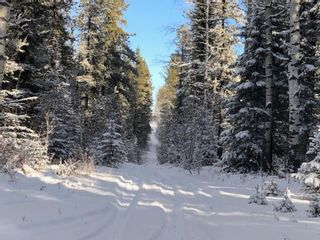 Photo 5: On Range road 8-0  , Section 19, 36, 7, W5: Rural Clearwater County Land for lease : MLS®# A1055389