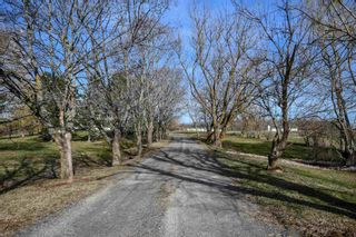 Photo 2: 282 & 296 Rockwell Mountain Road in Centreville: 404-Kings County Farm for sale (Annapolis Valley)  : MLS®# 202108453