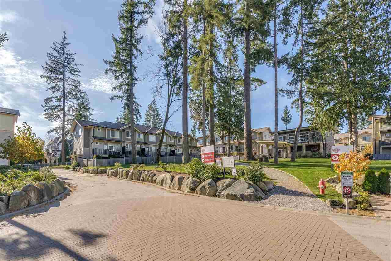"""Main Photo: 10 5957 152 Street in Surrey: Sullivan Station Townhouse for sale in """"PANORAMA STATION"""" : MLS®# R2423282"""