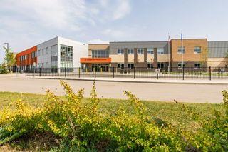 Photo 47: 3814 Allan Drive in Edmonton: Zone 56 Attached Home for sale : MLS®# E4255416