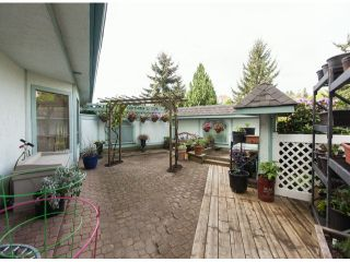 """Main Photo: 112 1830 E SOUTHMERE Crescent in Surrey: Sunnyside Park Surrey Condo for sale in """"Southmere Mews"""" (South Surrey White Rock)  : MLS®# F1311291"""