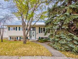Photo 1: 320 Willow Park Drive SE in Calgary: Willow Park Detached for sale : MLS®# A1041672