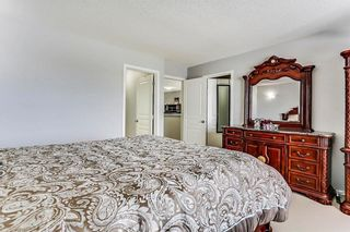 Photo 28: 325 Saddlecrest Way NE in Calgary: Saddle Ridge House  : MLS®# C4149874