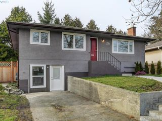 Photo 16: 3590 Shelbourne St in VICTORIA: SE Cedar Hill House for sale (Saanich East)  : MLS®# 805260