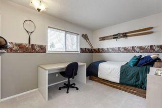 Photo 28: 104 SUN HARBOUR Crescent SE in Calgary: Sundance Detached for sale : MLS®# C4242284