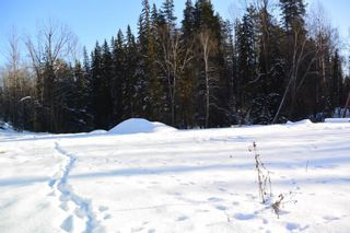 Photo 6: LOT A W 16 Highway in Smithers: Smithers - Town Land for sale (Smithers And Area (Zone 54))  : MLS®# R2533470