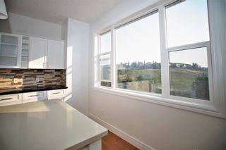 Photo 16: 209 Royal Elm Road NW in Calgary: Royal Oak Detached for sale : MLS®# A1107176