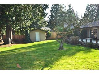 Photo 4: 19815 36A AV in Langley: Brookswood Langley Home for sale ()  : MLS®# F1434172