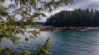 Photo 2: 863 Elina Rd in : PA Ucluelet Land for sale (Port Alberni)  : MLS®# 870302