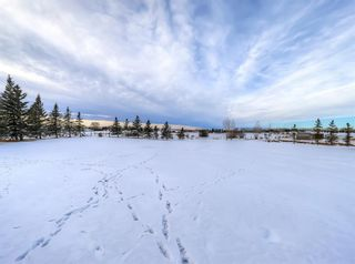 Photo 41: 263087 Range Road 293 in Rural Rocky View County: Rural Rocky View MD Detached for sale : MLS®# A1055802