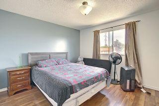 Photo 19:  in Edmonton: Zone 35 House for sale : MLS®# E4254409