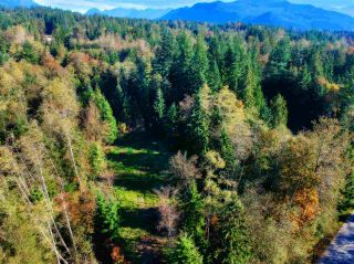 Photo 4: 30255 BRACKLEY Avenue in Mission: Stave Falls Land for sale : MLS®# R2527114