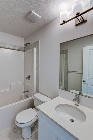 Photo 43: 216 Red Sky Terrace NE in Calgary: Redstone Detached for sale : MLS®# A1125516