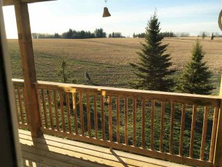 Photo 46: 48134 RGE RD 235: Rural Leduc County House for sale : MLS®# E4222972