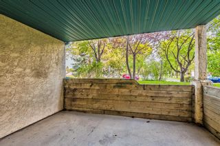 Photo 22: 103 11 Dover Point SE in Calgary: Dover Apartment for sale : MLS®# A1144552