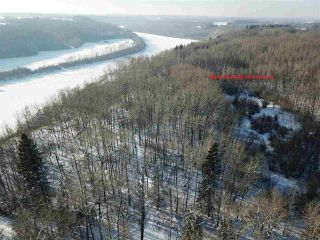 Photo 7: 50322 Rge Road 10: Rural Parkland County Rural Land/Vacant Lot for sale : MLS®# E4226887