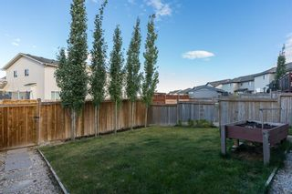 Photo 28: 34 PANORA View NW in Calgary: Panorama Hills Detached for sale : MLS®# A1027248