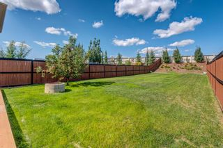 Photo 41: 158 Covemeadow Road NE in Calgary: Coventry Hills Detached for sale : MLS®# A1141855