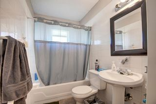 Photo 15: 503 35 Street NW in Calgary: Parkdale Detached for sale : MLS®# A1115340