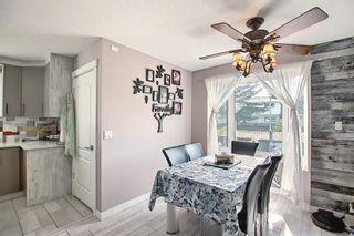 Photo 12: 6511 24 Avenue NE in Calgary: Pineridge Detached for sale : MLS®# A1152283