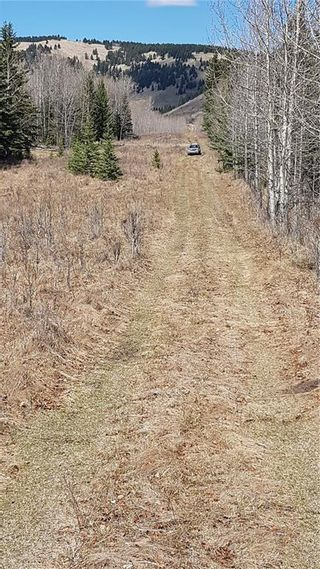 Photo 14: Range Road 55 in Rural Rocky View County: Rural Rocky View MD Land for sale : MLS®# C4295902