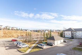 Photo 29: 306 2000 Citadel Meadow Point NW in Calgary: Citadel Apartment for sale : MLS®# A1055011