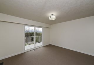 Photo 15: 4653 McQuillan Rd in COURTENAY: CV Courtenay East House for sale (Comox Valley)  : MLS®# 838290
