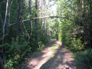 Photo 2: SW 1/4 DL 1680 ROAD 2A FSR in No City Value: Out of Town Land for sale : MLS®# R2603759