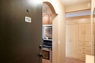 Photo 4: 703 2909 17 Avenue SW in Calgary: Killarney/Glengarry Apartment for sale : MLS®# A1089476