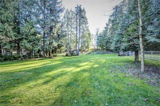Photo 5: 33278 TUNBRIDGE Avenue in Mission: Mission BC House for sale : MLS®# R2323967